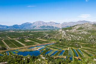 Dolina Neretve, Neum, Ston, Pelješac in mandarine