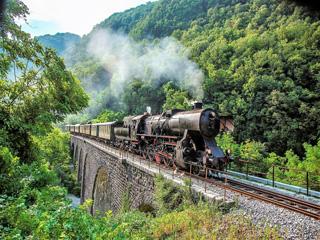 Muzejski vlak po Bohinjski progi