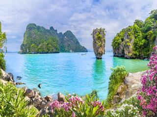 Barvita azijska džungla - Tajska, Malezija, Singapur